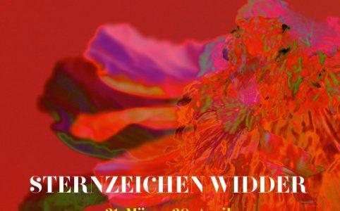 Sternzeichen Widder, Illustration und © Claudia Hohlweg für Blumoon