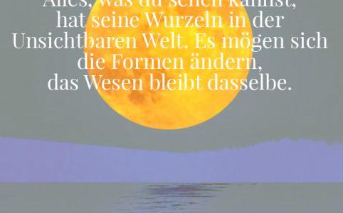 Vollmond in den Fischen, Illustration und Copyright: Claudia Hohlweg für Blumoon