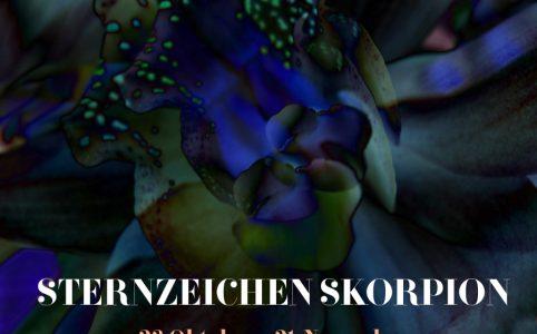 Sternzeichen Skorpion, Illustration und © Claudia Hohlweg für Blumoon