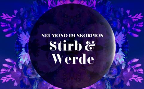 Neumond im Skorpion, Illustration und © Claudia Hohlweg für Blumoon