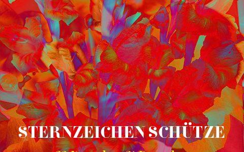 Sternzeichen Schütze, Illustration und © Claudia Hohlweg für Blumoon