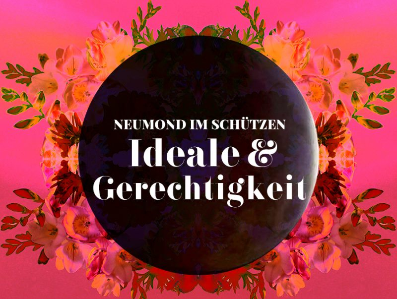 Neumond im Schützen, Illustration und © Claudia Hohlweg für Blumoon