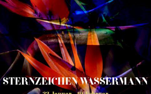 Sternzeichen Wassermann, Artwork und © Claudia Hohlweg für Blumoon
