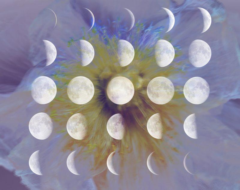 Mondzyklus, Illustration und © Claudia Hohlweg für Blumoon