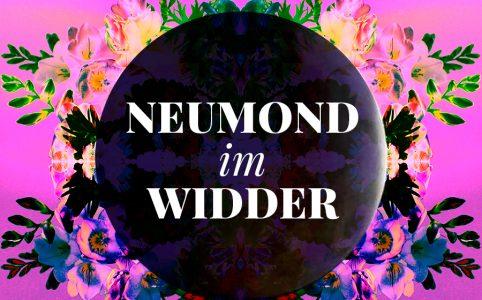 Neumond Widder, Illustration und © Claudia Hohlweg für Blumoon