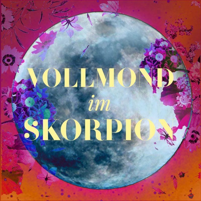 Vollmond im Skorpion, Illustration und © Claudia Hohlweg für Blumoon