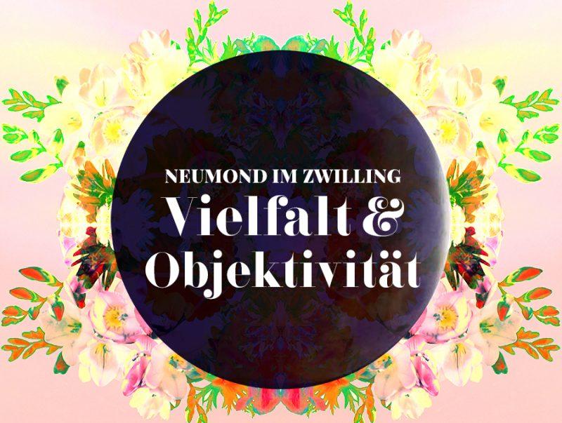 IIllustration vom Zwilling-Neumond mit Blumen hinterlegt, Illustration und © Claudia Hohlweg für Blumoon