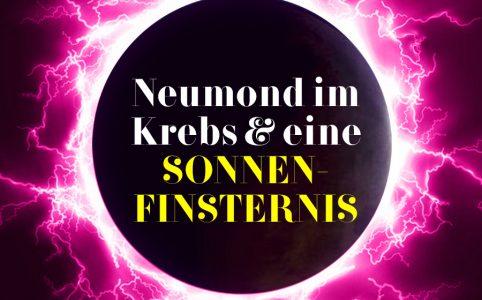 Bild zum Krebs-Neumond, Illustration und © Claudia Hohlweg für Blumoon