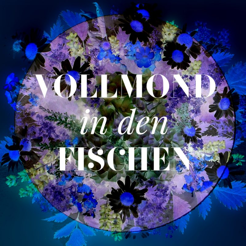 Illustration vom Fische-Vollmond