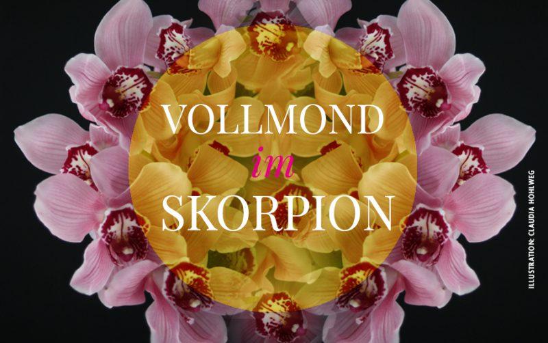 Vollmond im Skorpion, Illustration für den Vollmond im Skorpion © Claudia Hohlweg für Blumoon