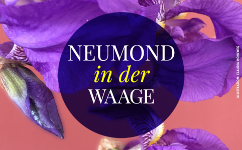 Illustration für den Neumond in der Waage