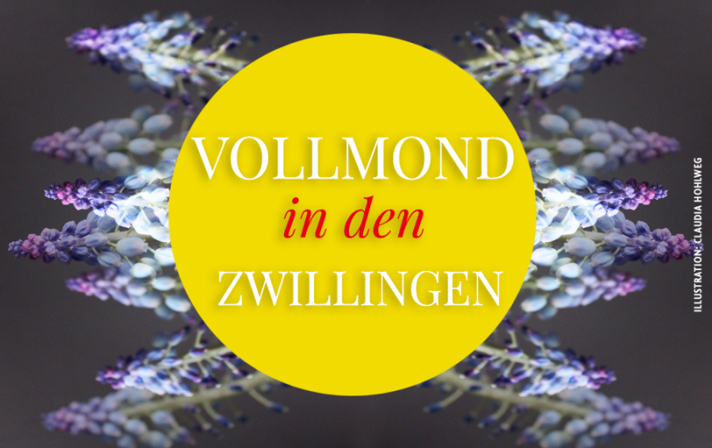 Illustration für den Vollmond in den Zwillingen