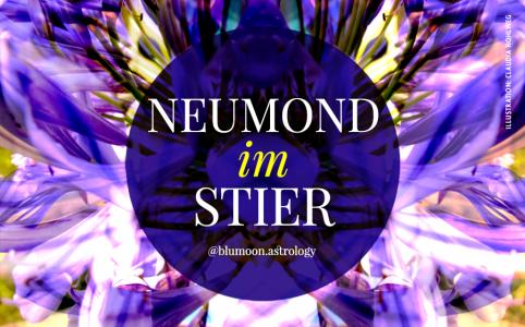 Illustration für den Neumond im Stier © Claudia Hohlweg für Blumoon
