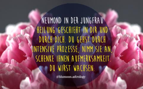 Illustration für den Neumond in der Jungfrau