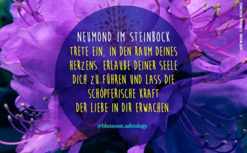 Farbige Illustration für den Neumond im Steinbock